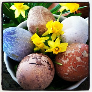 Easter Egg Photo Contest!!! Hurry, ends Sat 3/30 at 1pm!